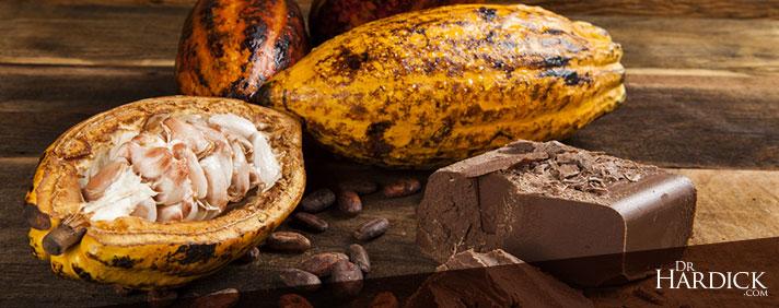BlogBanner_Cacao-vs.-Cocoa
