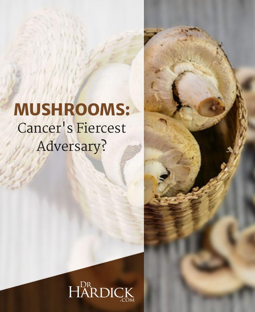 Pinterest_Mushrooms-Cancer's-Fiercest-Adversary