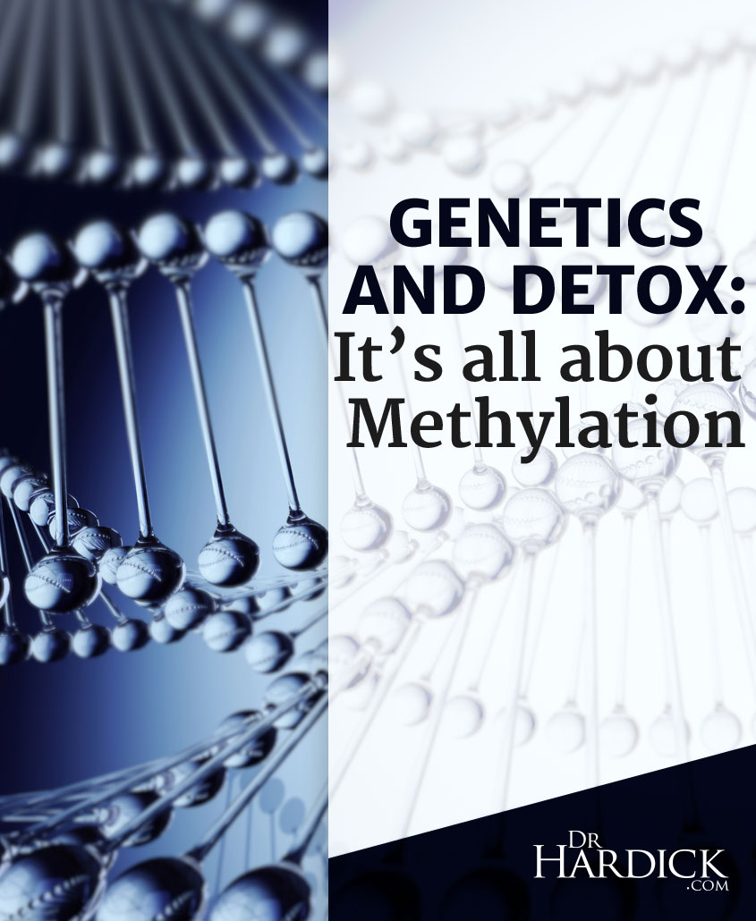 pinterest_genetics-detox-and-methylation