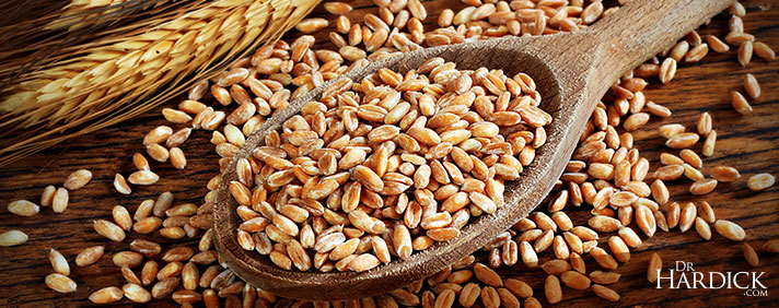 BlogBanner_Wheat